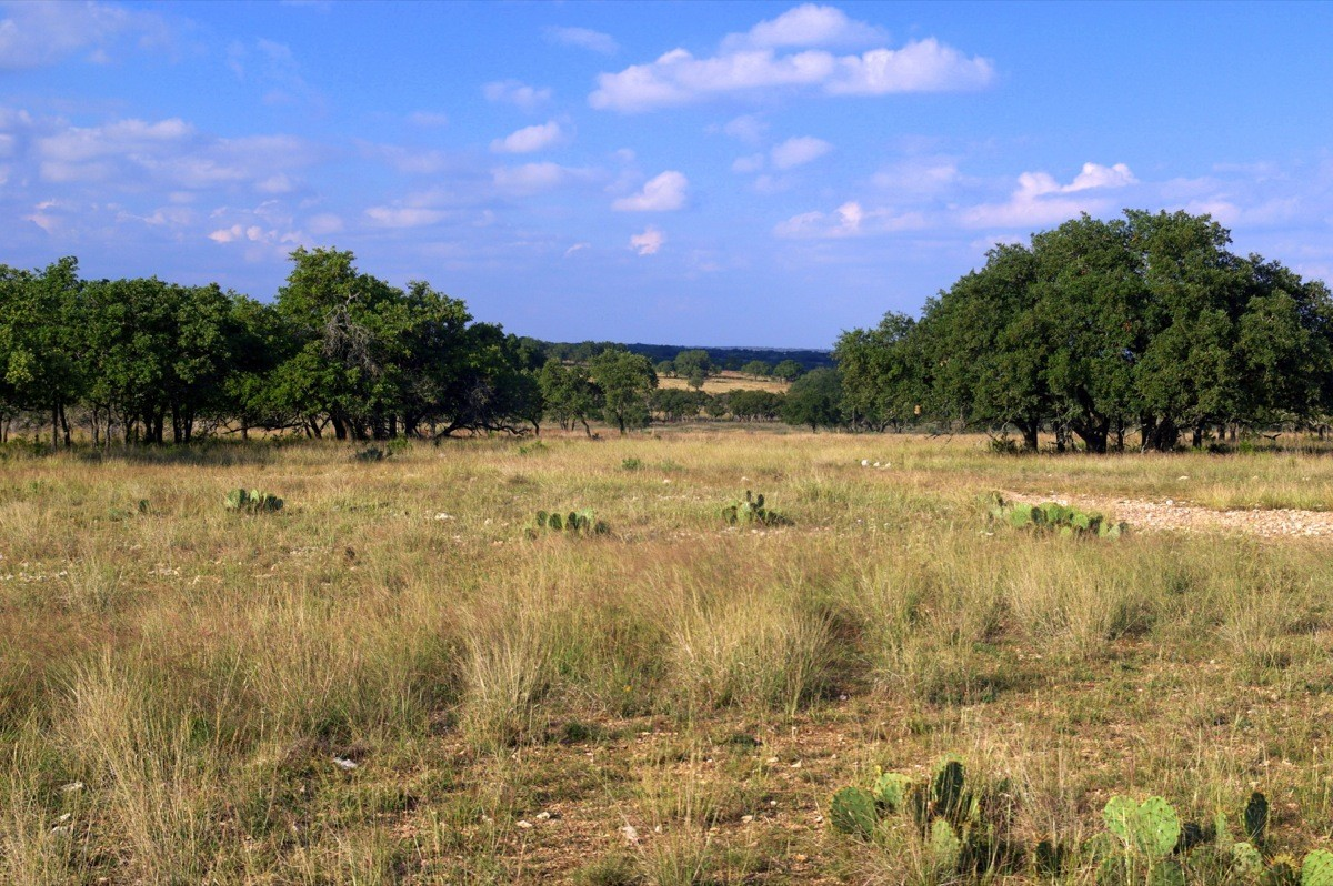 Hill Country Ranches Texas Ranches For Sale