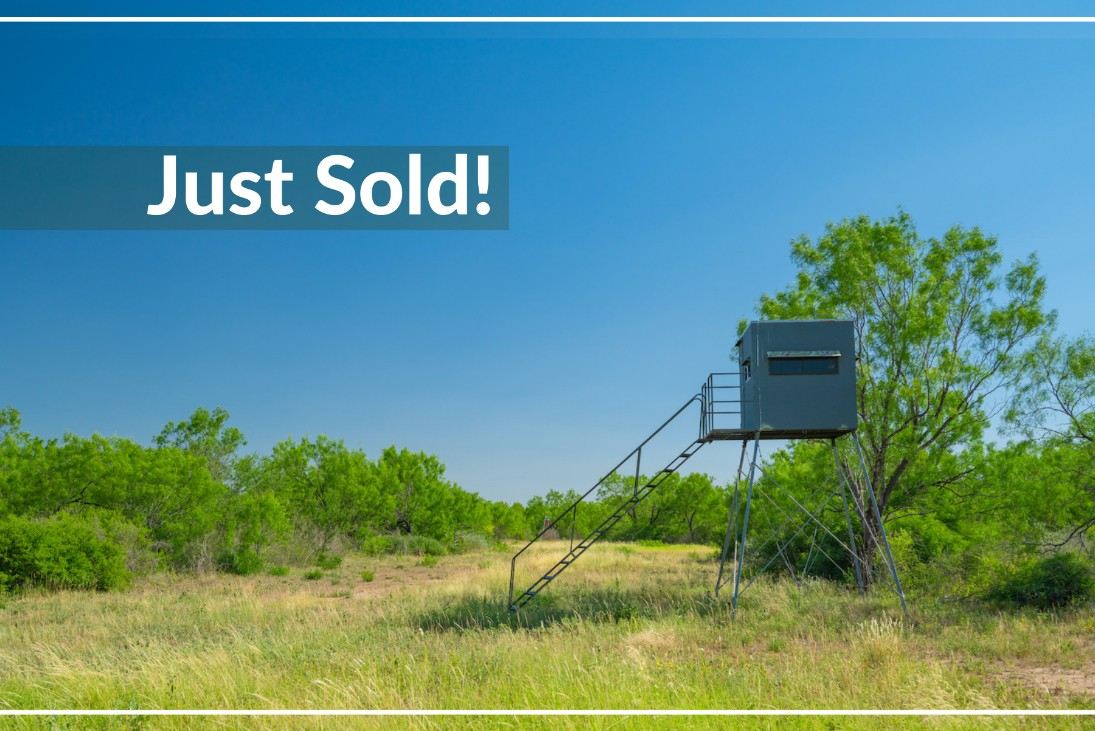 Arenosa Creek got recently sold